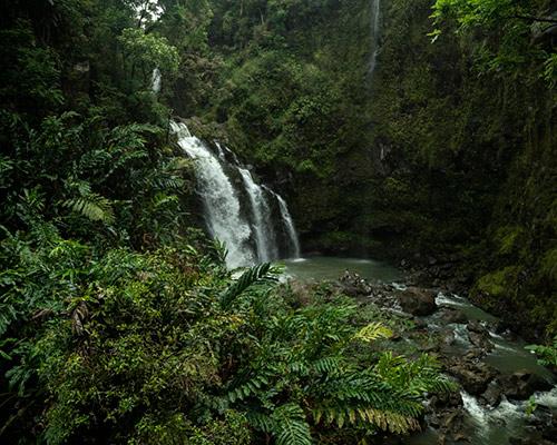 Hana & Back Rainforest Tour (10 -11 hours) image